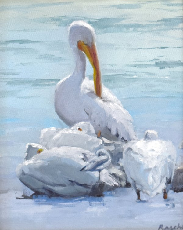 pelican oil painting