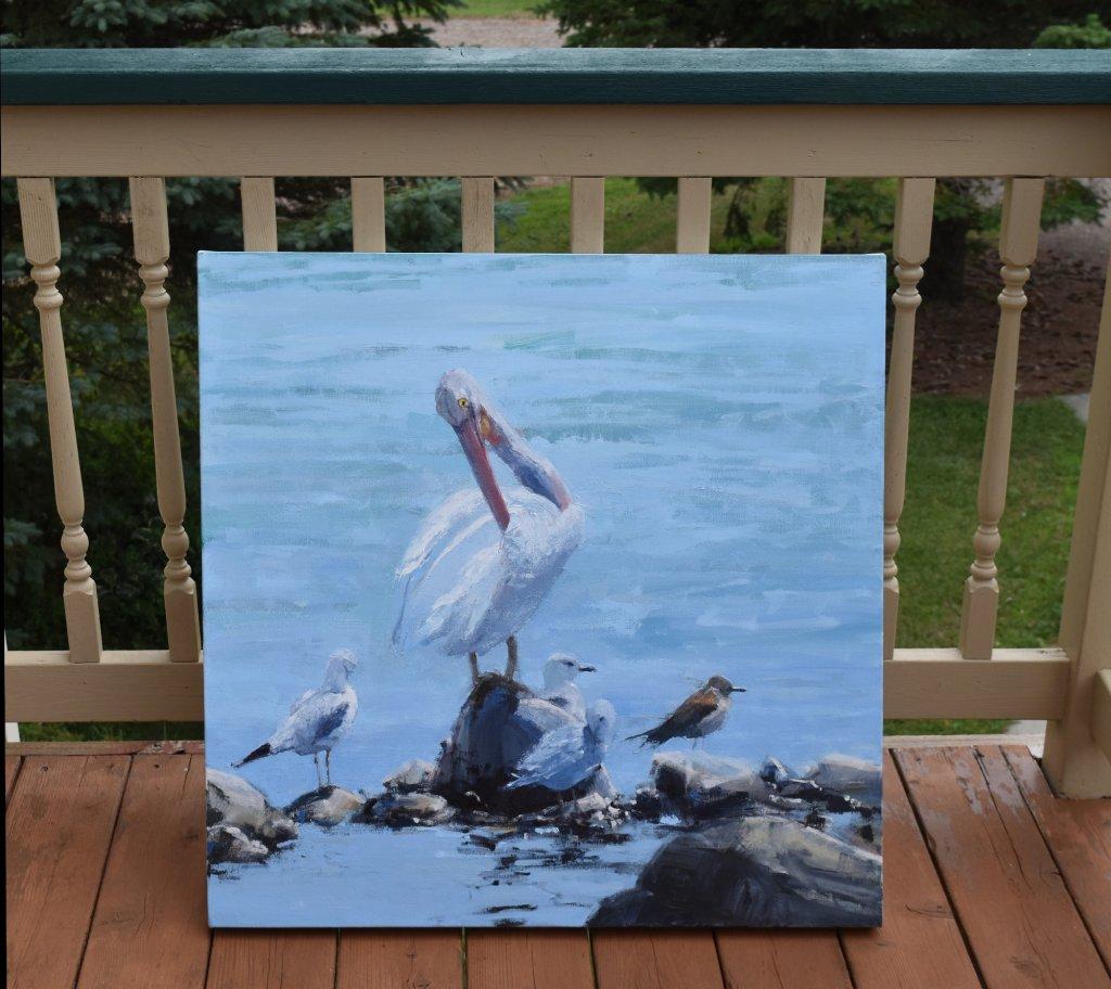 pelican oil paintings
