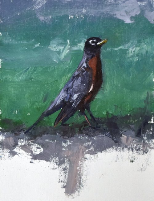 south dakota robin bird painting