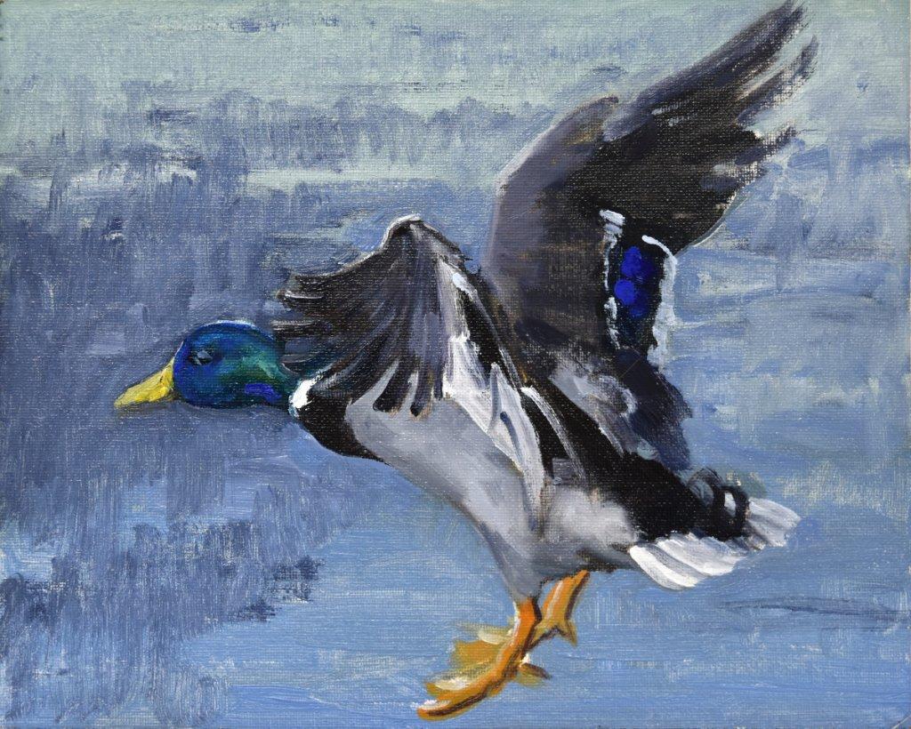 south dakota bird landscape paintings