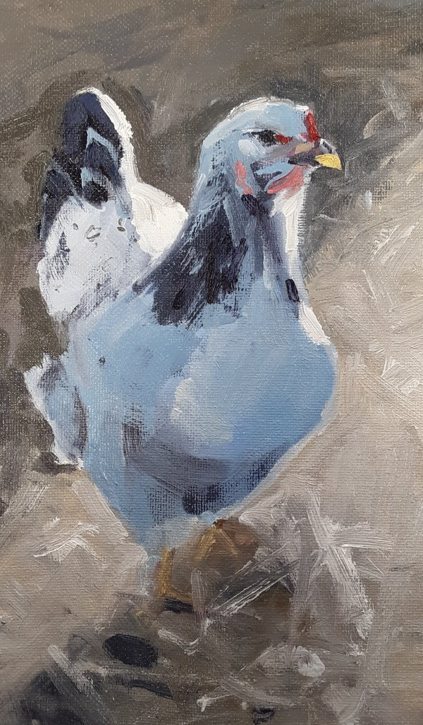 chicken impressionist painting