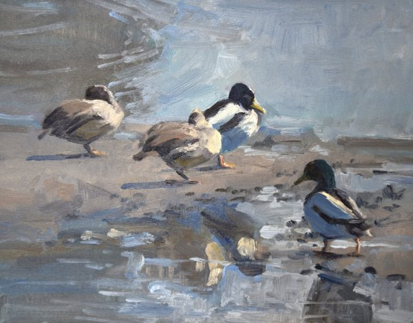 south dakota duck painting