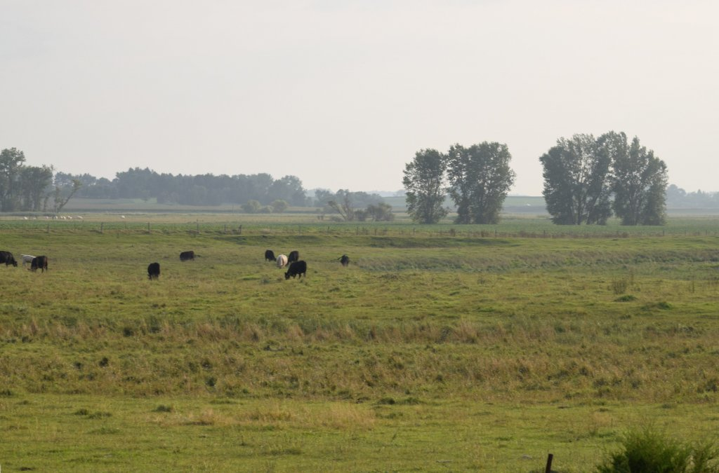 south dakota landscape photo