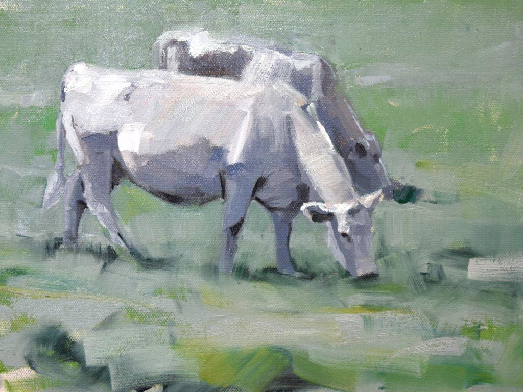 south dakota cow painting